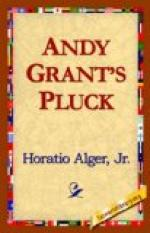 Andy Grant's Pluck by Horatio Alger, Jr.