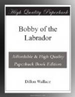 Bobby of the Labrador by