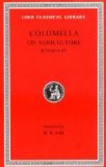 Columella by