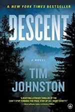 Descent by Johnston, Tim