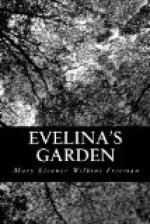 Evelina's Garden by Mary Eleanor Wilkins Freeman