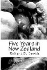 Five Years in New Zealand by
