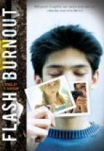 Flash Burnout by L. K. Madigan