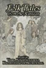 Folk Tales from the Russian by