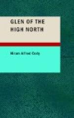 Glen of the High North by