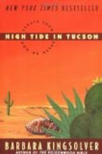 High Tide in Tucson by
