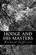 Hodge and His Masters by Richard Jefferies