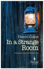In a Strange Room by Damon Galgut