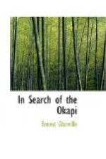 In Search of the Okapi by Ernest Glanville