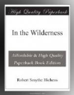 In the Wilderness by Robert Smythe Hichens