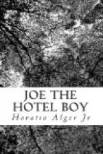 Joe the Hotel Boy by Horatio Alger, Jr.