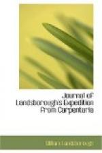 Journal of Landsborough's Expedition from Carpentaria by