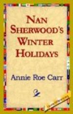 Nan Sherwood's Winter Holidays by