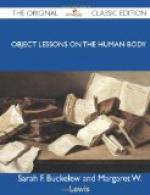 Object Lessons on the Human Body by