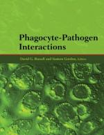 Phagocyte by