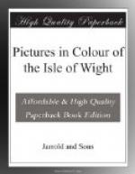 Pictures in Colour of the Isle of Wight by