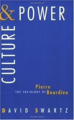 Pierre Bourdieu by