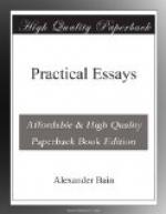 Practical Essays by Alexander Bain