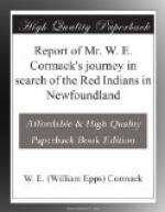 Report of Mr. W. E. Cormack's journey in search of the Red Indians in Newfoundland by
