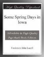 Some Spring Days in Iowa by