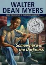 Somewhere in the Darkness by Walter Dean Myers