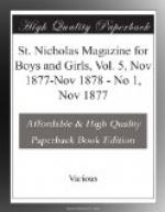 St. Nicholas Magazine for Boys and Girls, Vol. 5, Nov 1877-Nov 1878 by