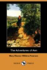 The Adventures of Ann by Mary Eleanor Wilkins Freeman