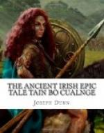 The Ancient Irish Epic Tale Táin Bó Cúalnge by