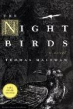The Bird of Night by