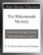 The Bittermeads Mystery by
