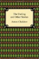 The Darling and Other Stories by Anton Chekhov