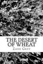 The Desert of Wheat by Zane Grey