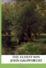 The Eldest Son by John Galsworthy