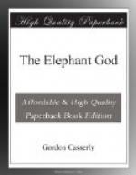 The Elephant God by