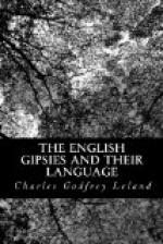 The English Gipsies and Their Language by Charles Godfrey Leland