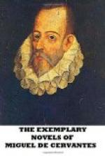 The Exemplary Novels of Cervantes by Miguel de Cervantes