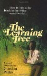 The Learning Tree by