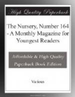 The Nursery, Number 164 by