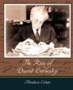 The Rise of David Levinsky by