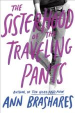 The Sisterhood of the Traveling Pants by Ann Brashares