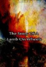 The Story of a Lamb on Wheels by Laura Lee Hope