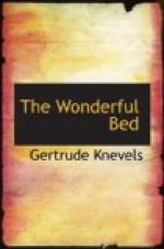 The Wonderful Bed by