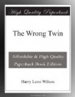 The Wrong Twin by