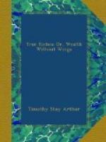 True Riches by Timothy Shay Arthur