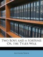 Two Boys and a Fortune, or, the Tyler Will by