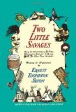 Two Little Savages by Ernest Thompson Seton