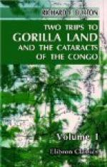 Two Trips to Gorilla Land and the Cataracts of the Congo Volume 1 by Richard Francis Burton
