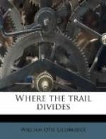 Where the Trail Divides by