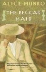 The Beggar Maid: Stories of Flo and Rose by Alice Munro