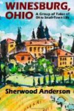 Winesburg, Ohio; a group of tales of Ohio small town life by Sherwood Anderson